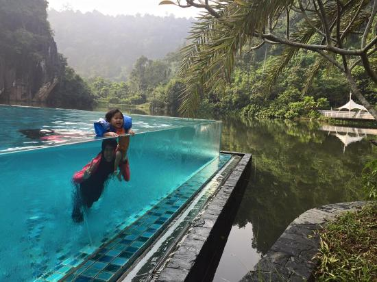 Infinity Pool Picture Of The Haven Resort Hotel Ipoh All Suites Ipoh Tripadvisor