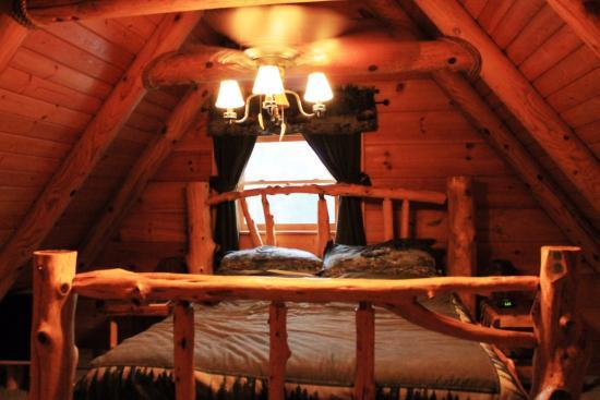 The Hidden Cave Ranch Bed & Breakfast : The moose room.