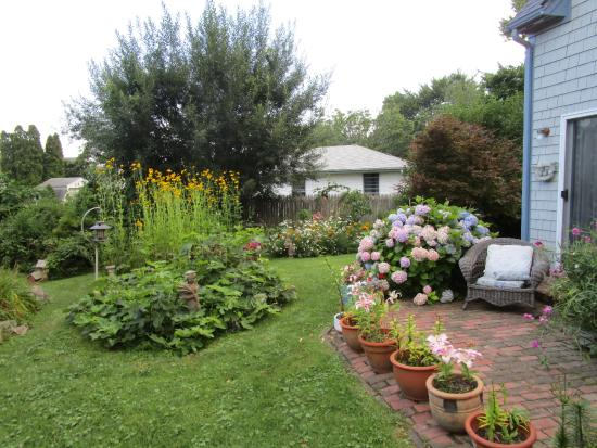 Gardenview Bed and Breakfast: the backyard