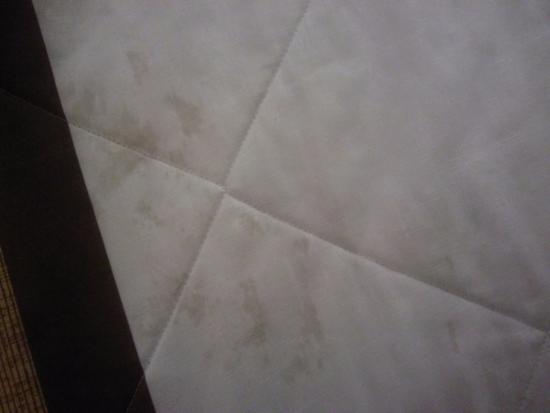 Extended Stay America - Nashville - Vanderbilt : Blanket stain