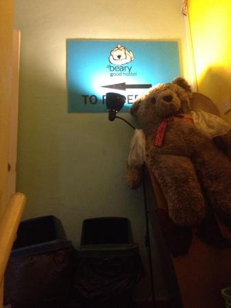 A Beary Good Hostel: มีหมีมาต้อนรับ
