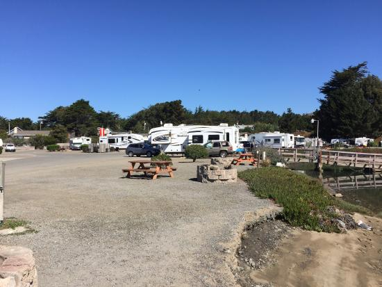 Porto Bodega Marina & RV Park: photo1.jpg