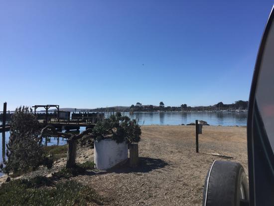 Porto Bodega Marina & RV Park: photo2.jpg