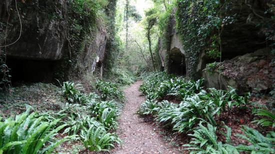 Crazannes, França: chaque mètre est l'occasion de voir un autre paysage