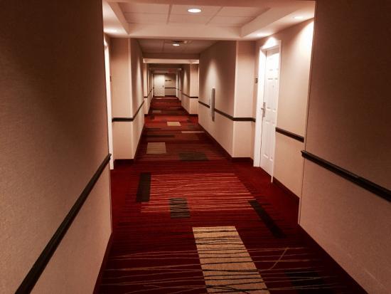 米德爾伯里萬怡酒店照片
