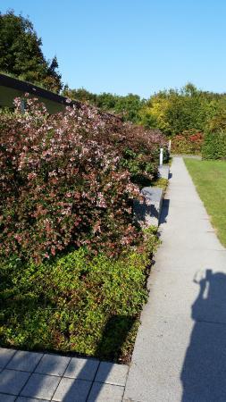 Erstein, Francia: le parc