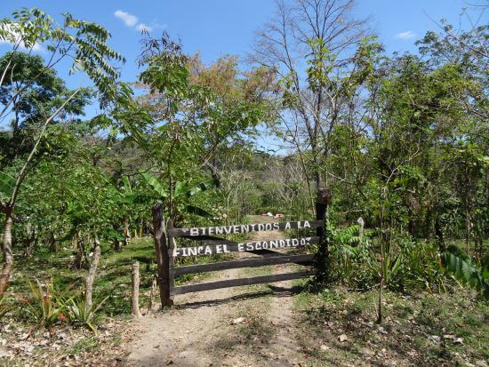 El Escondido: entry to the finca