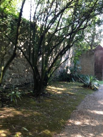 Ninfa Giardini E Storia Foto Di Giardino Di Ninfa