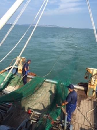 Shengsi County, Chiny: 漁船にのって漁の見学