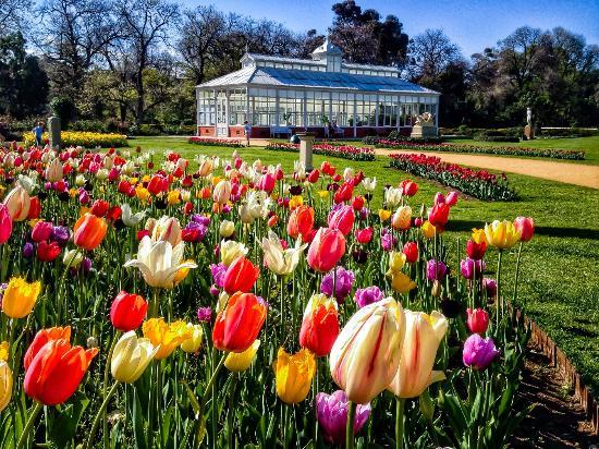 Rosalind Park