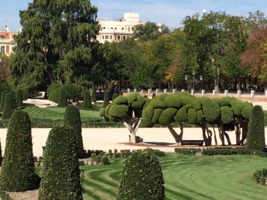 Retiro park bild von jardin de recoletos madrid for Jardin de recoletos madrid