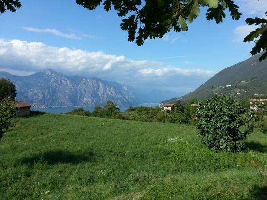 Agriturismo San Maggiore: Blick von der Frühstücksterrasse auf den Gardasee