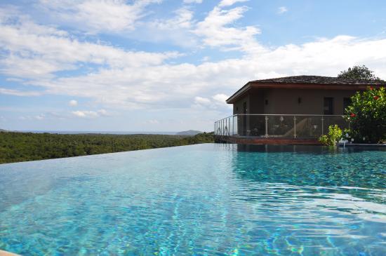 la piscine à débordement - photo de hotel version maquis, bonifacio