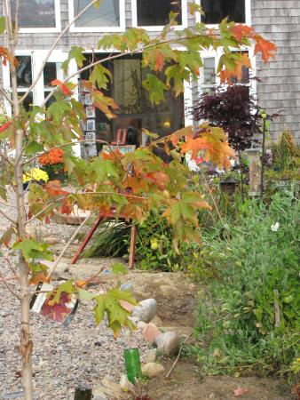 Winter Harbor, ME: Garden Walk to the Gallery
