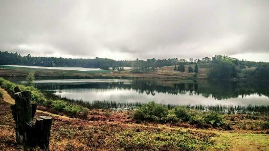 Stanford Lake Lodge: View