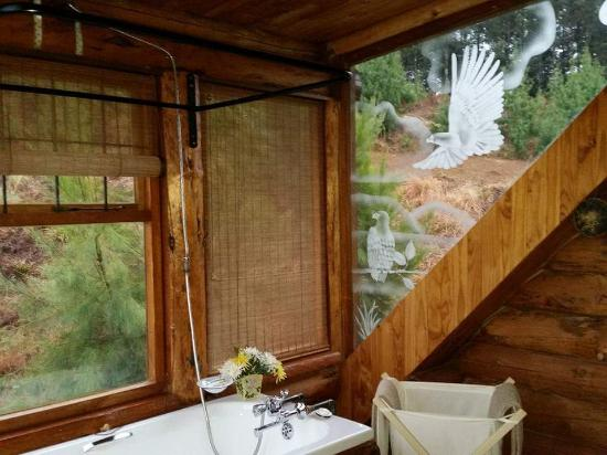 Stanford Lake Lodge: Bathroom with a view