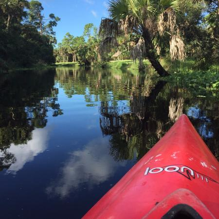 Jupiter, فلوريدا: Kayaking on the Loxahatchee