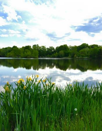 7 acre fishing lake picture of cedar creek new haven for Cedar creek lake fishing