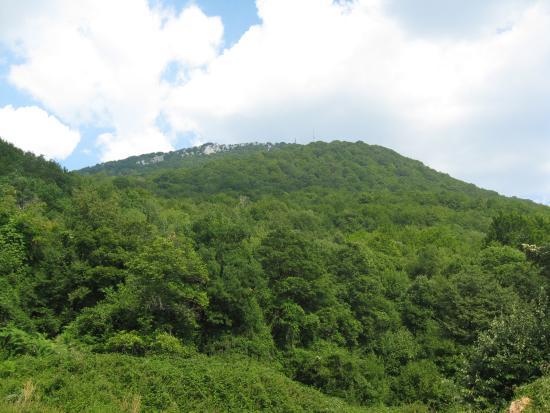Mount Dajti: гора дайти