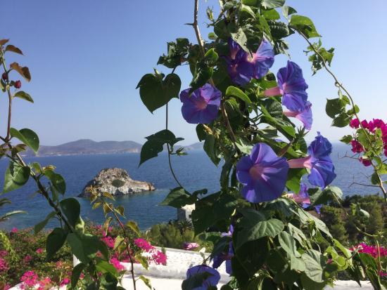 Eirini Luxury Hotel Villas : Start of a great day!!