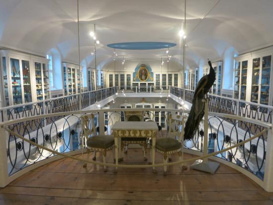 Naturkunde-Museum Bamberg