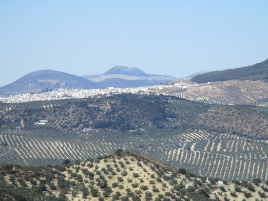 Cortijo La Loma: View from the Pool
