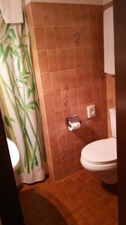 Albergo Svizzero: トイレです