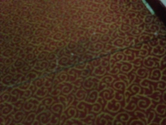 Red Roof Inn Burlington: Patched and dirty carpet