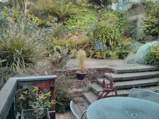 Bernalview B&B: garden