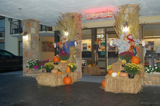 Vacation Lodge: fall season