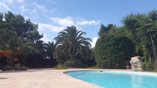 Menhirs Albergo Residenziale: Poolside