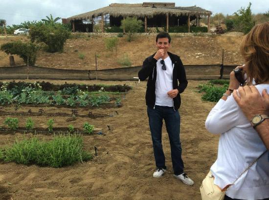 Organic Farm Tour at Huerta Los Tamarindos: Sampling ingredients