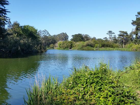 Stow Lake Picture Of Golden Gate Park San Francisco