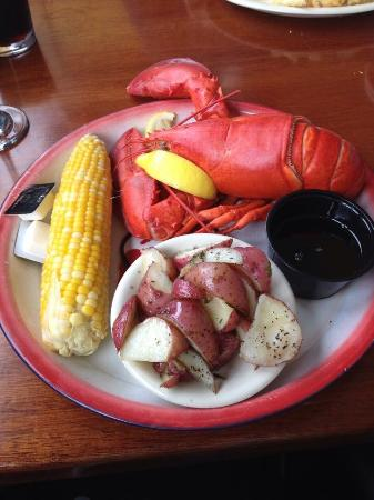 Lobster dinner picture of fish house grill bar harbor for Island fish grill