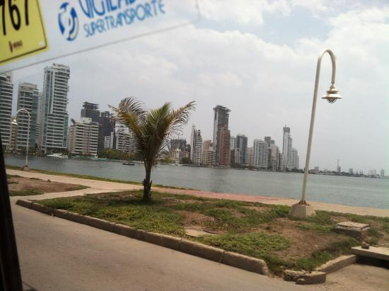 Claudia Vidal - Private Tour Guide: High-rises on the bay.