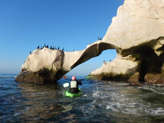 Kayak Trip With Pismo Beach Surf