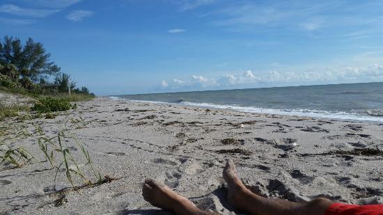 Picture of Blind Pass Beach, Englewood - Tripadvisor