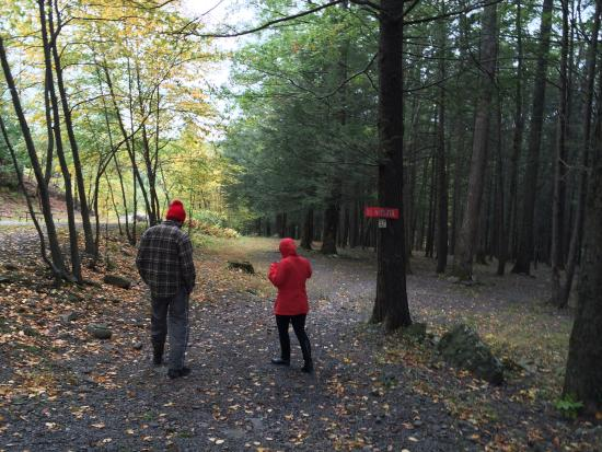 Cranberry Run Campground: touring other campsites