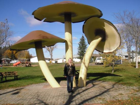 Vilna, Canada: A Pose With The Mushrooms