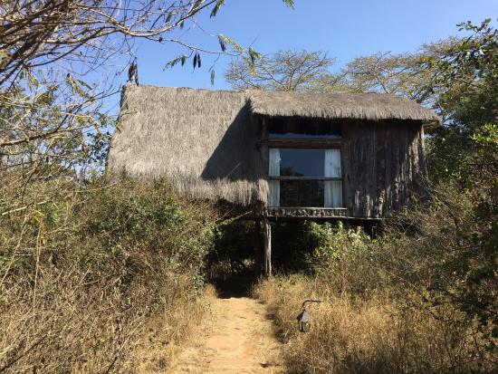 Ngong House: Our treehouse