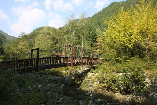 Gagok Natural Recreation Forest