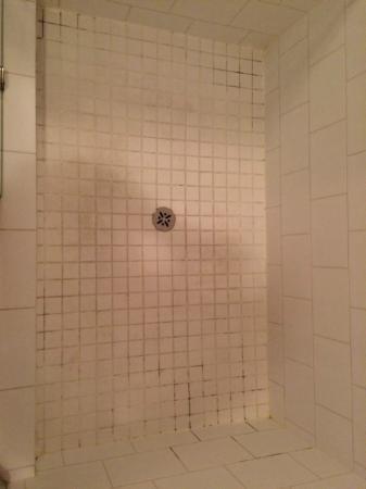 Predator Ridge Resort: Shower 2