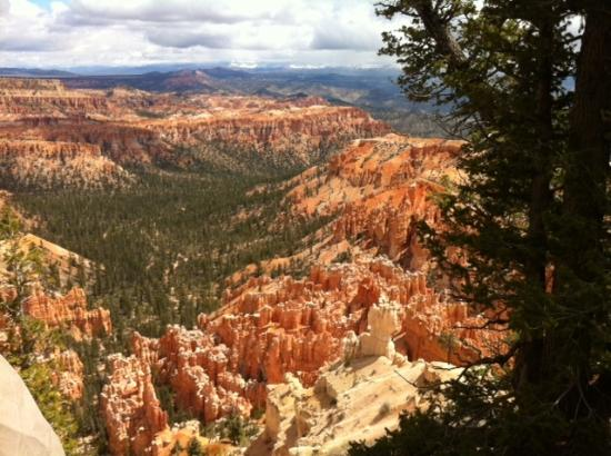 bild von bryce point bryce canyon nationalpark tripadvisor. Black Bedroom Furniture Sets. Home Design Ideas