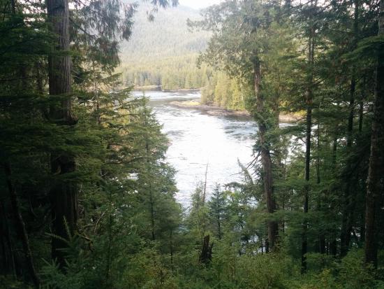 Butze Rapids Park and Trail: Butze Rapids Lookout