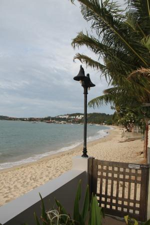 The Boardroom Beach Bungalows