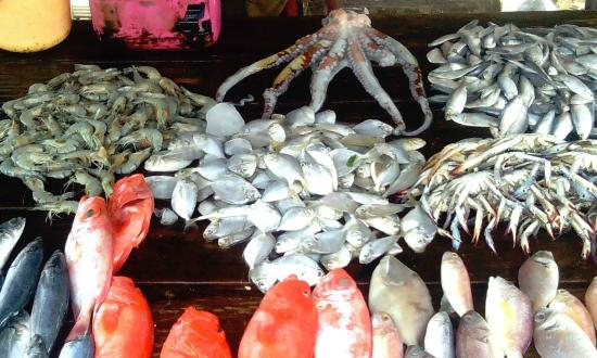 Sea Food Weligama