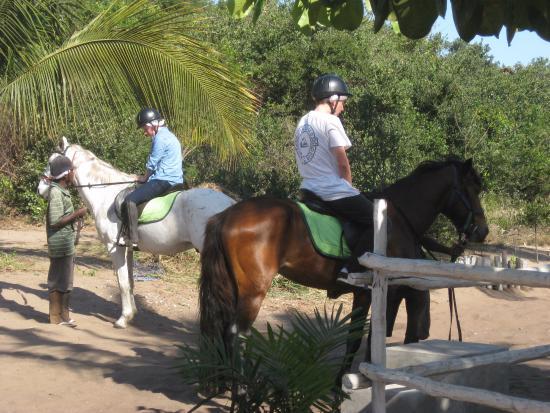 Zavora Lodge: horse riding