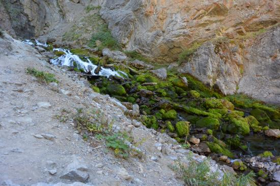 Afton, WY: vandet kommer