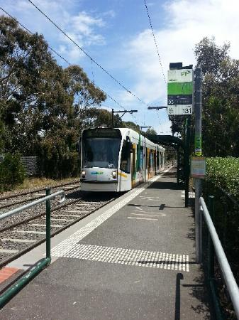 Jackson's on Middle Park: Fraser St tram 200m