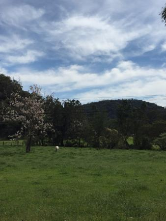 Ossian Hall Valley Retreat: Peaceful valley